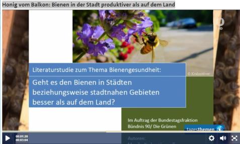 snip_bienstudieberlin