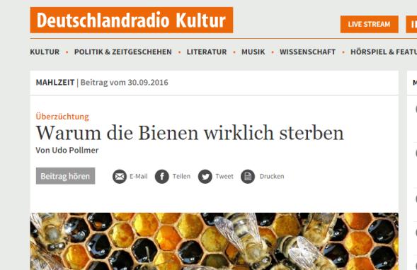 snip_deutschlandradio