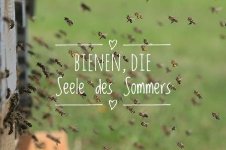 BienenSeele